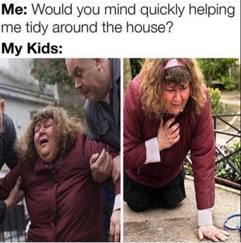 meme cropped